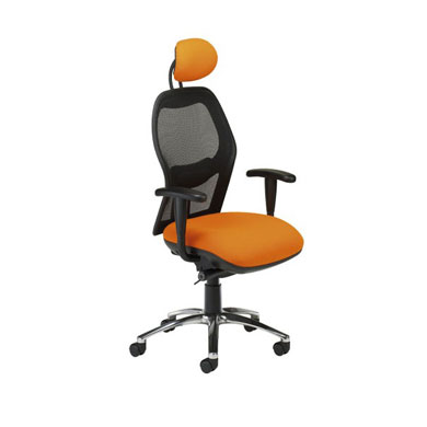 Mesh Back Executive Task Chair